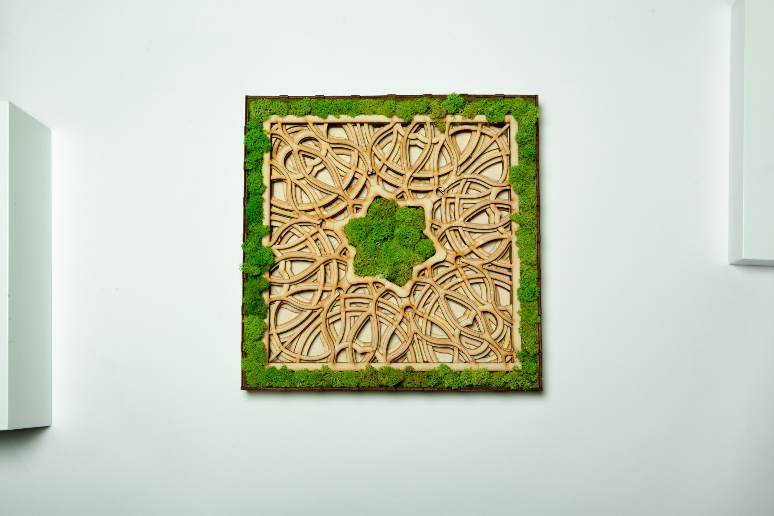 tablou licheni, madala in 6 layere, moss, cadou gift