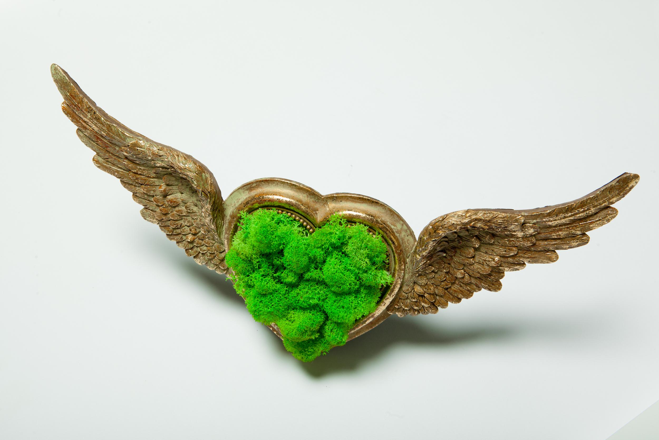 Tablou licheni, aripi de ingeri, inima, cadou, iubire, love, gift
