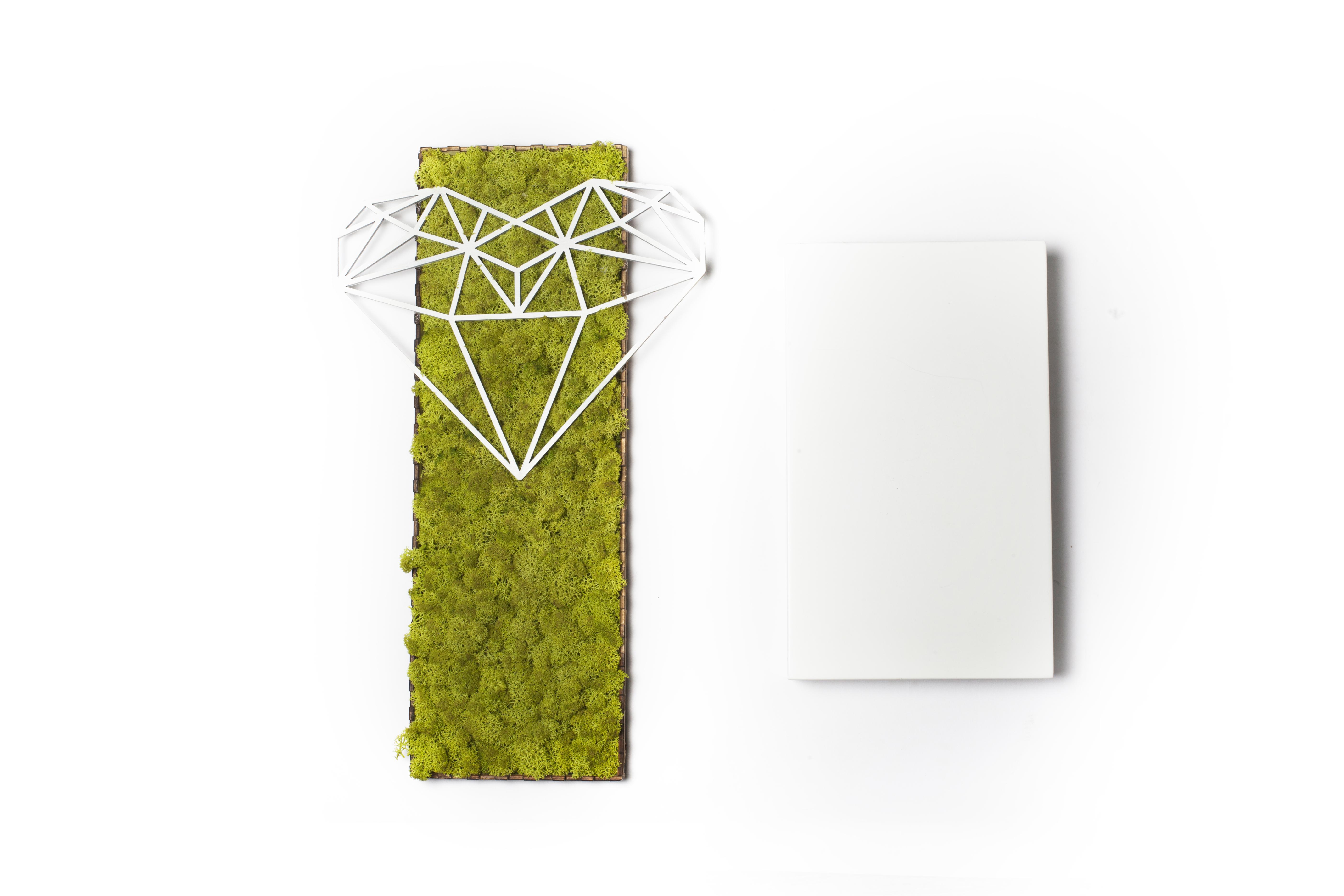 Tablou licheni , inima geometrica, love, diamond heart, cadouri, gift