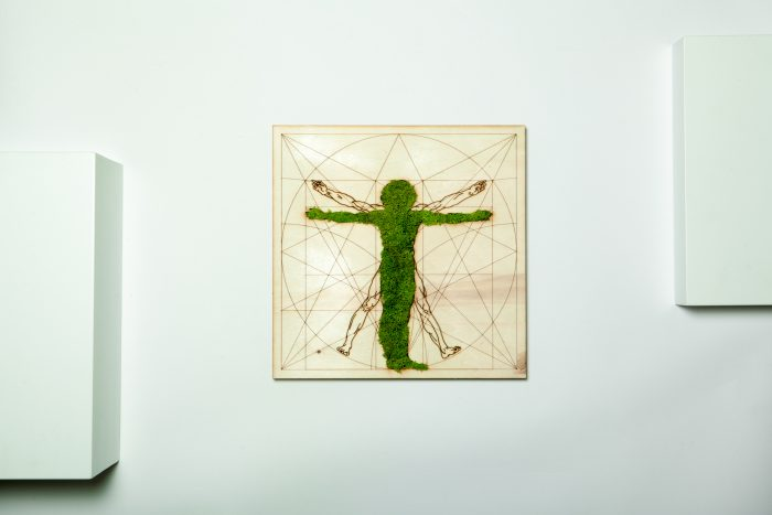 Tablou licheni, human nature, omul vitruvian, muschi, moss cadouri, gift