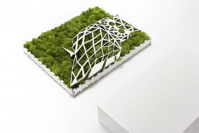 tablou licheni, bufnita, owl, cadou, gift, moss,