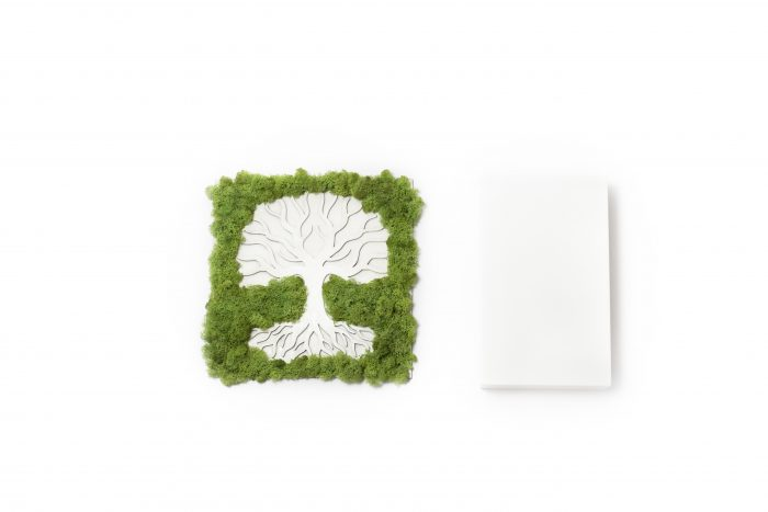 Tablou licheni, copacul vietii, cadou, gift, moss