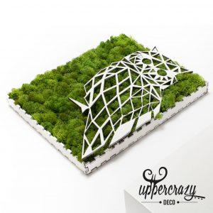 Tablou cu licheni bufinita, cadou personalizat