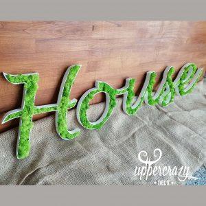 tablou licheni cu mesaj personalizabil, house